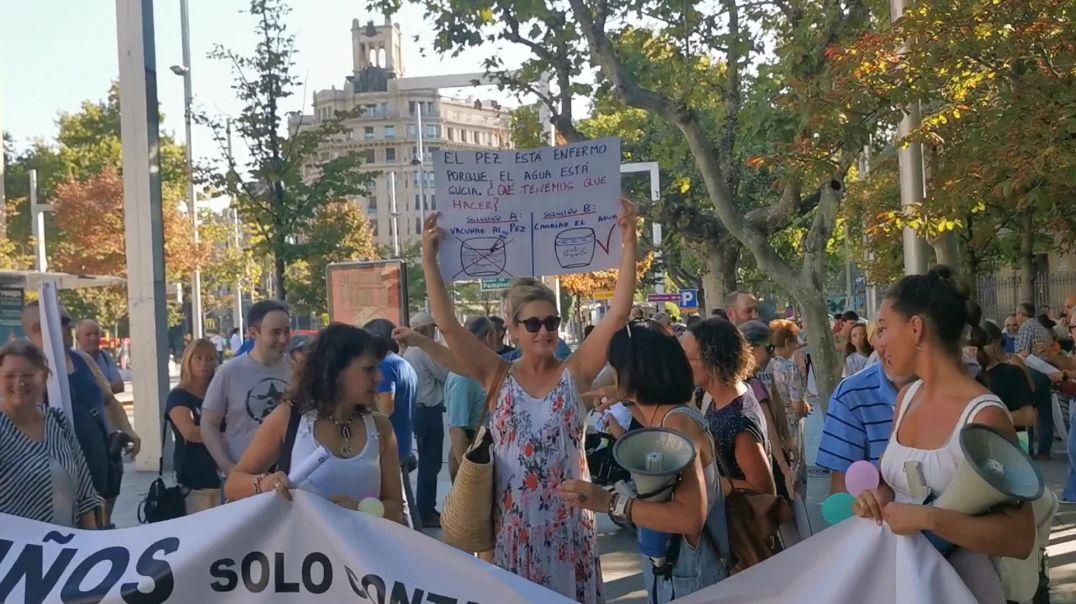 ¡Los Niños No Se Tocan! - Manifestación 5 de septiembre 2021 en Zaragoza.